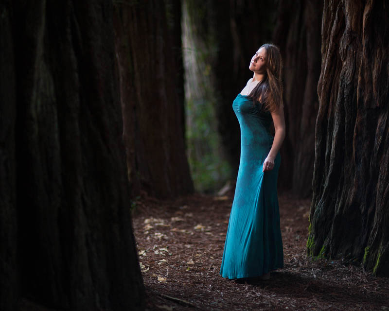 high school senior portrait by huge trees with blue dress